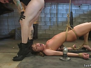 Baby verge on flogged and assfucking humped